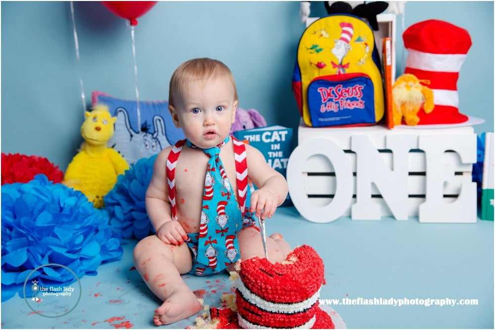 Magnificent Ethan Dr Seuss Cake Smash Portland Ct Cake Smash Photographer Funny Birthday Cards Online Aeocydamsfinfo