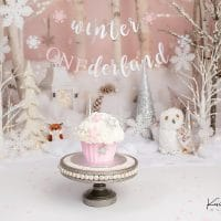 Ava | Winter Onederland Cake Smash | West Hartford, CT Cake Smash Photographer