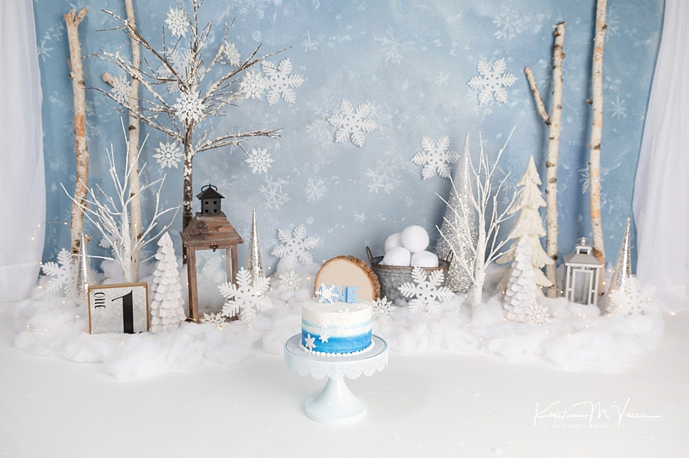 Winter onederland cake smash by The Flash Lady Photography