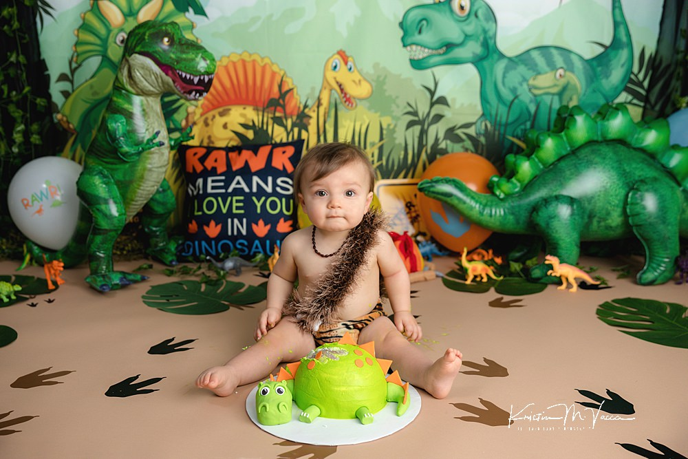 Dinosaur cake smash by The Flash Lady Photography