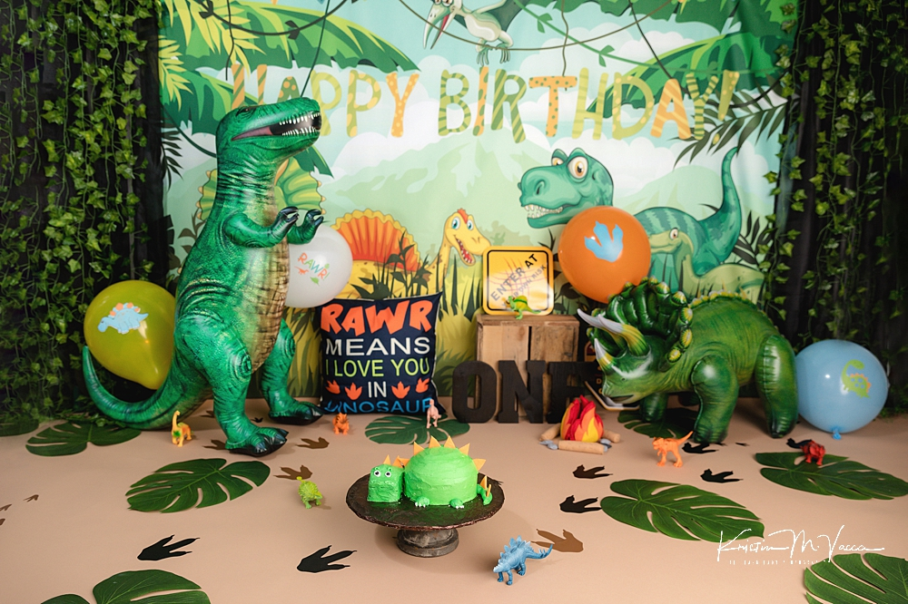Dino cake smash by The Flash Lady Photography